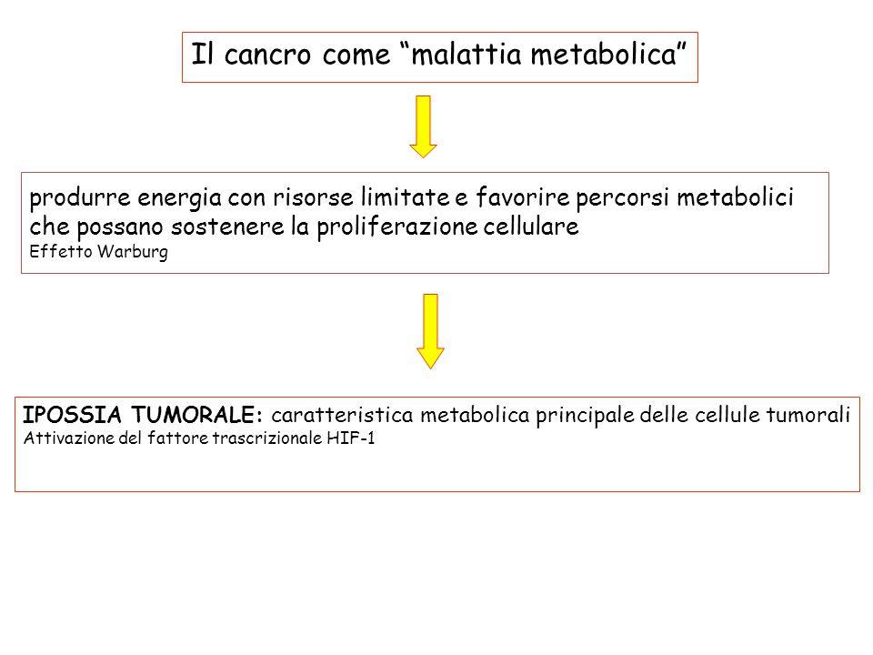 Il cancro come malattia metabolica