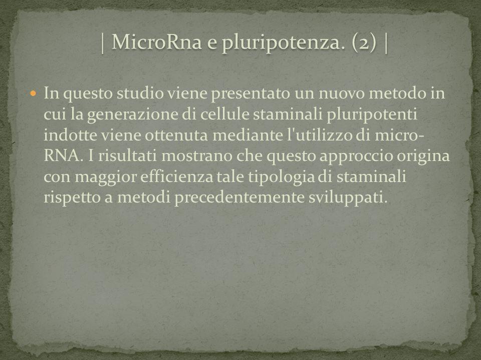 | MicroRna e pluripotenza. (2) |