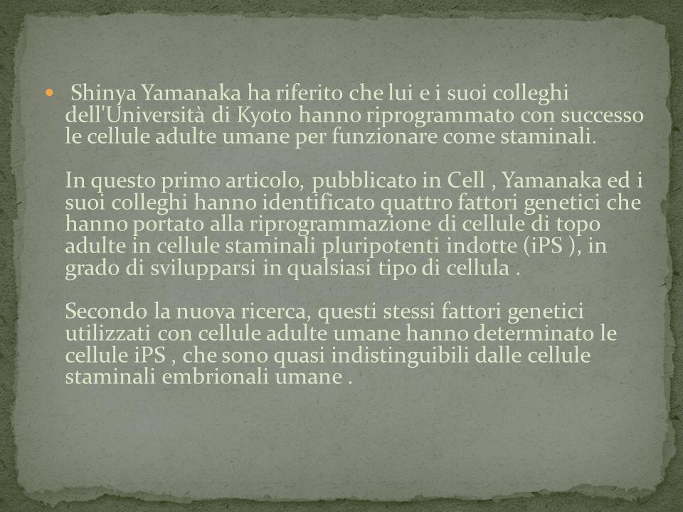 Shinya Yamanaka ha riferito che lui e i suoi colleghi dell Università di Kyoto hanno riprogrammato con successo le cellule adulte umane per funzionare come staminali.