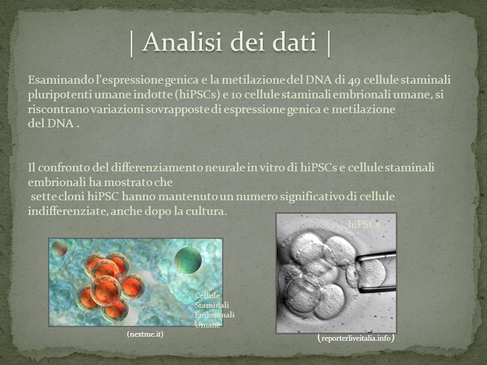 | Analisi dei dati |
