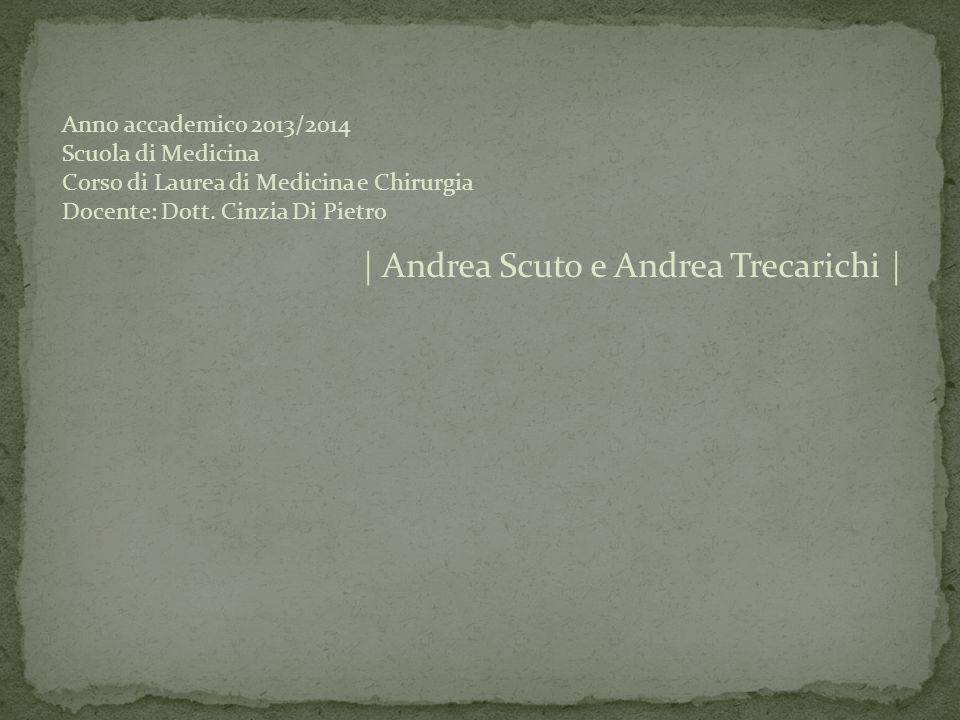 | Andrea Scuto e Andrea Trecarichi |