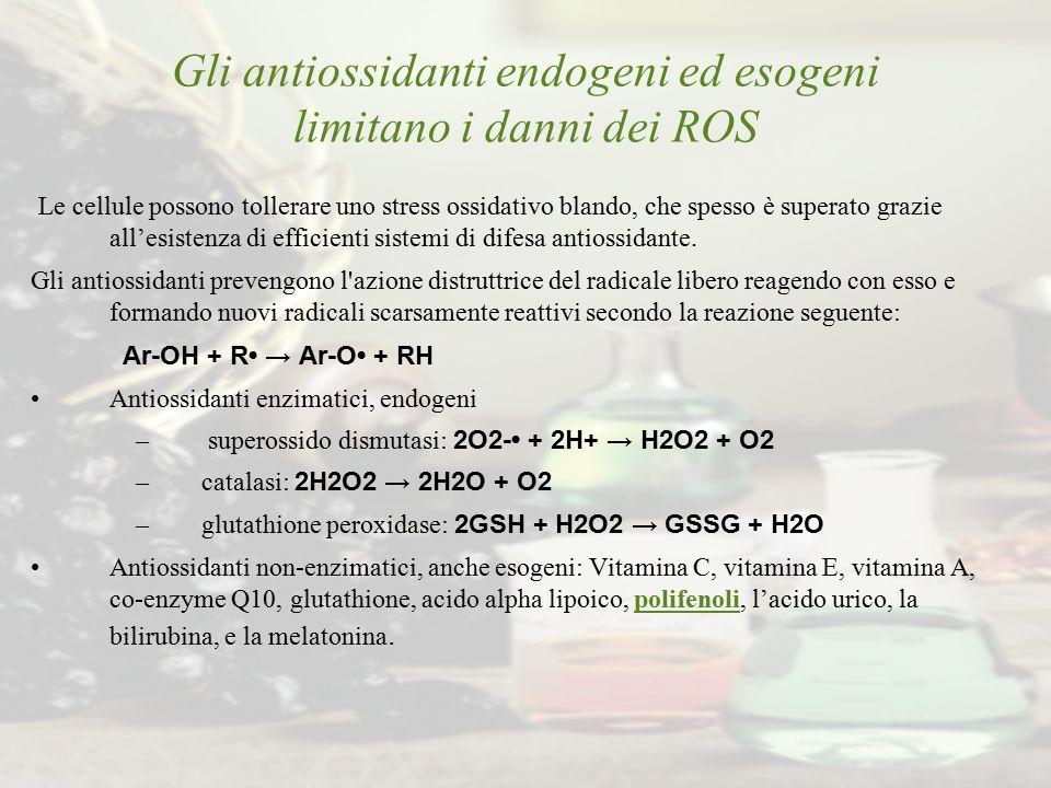 Gli antiossidanti endogeni ed esogeni limitano i danni dei ROS