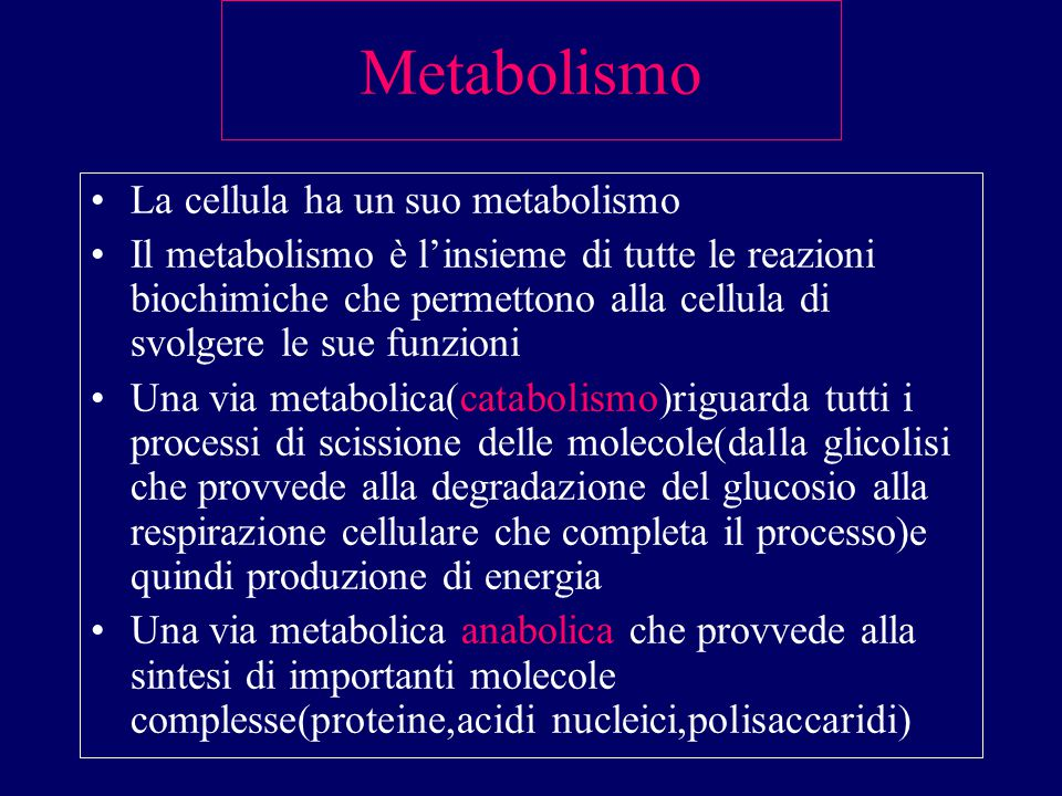 Metabolismo La cellula ha un suo metabolismo