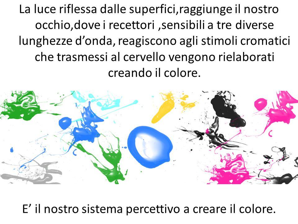 E' il nostro sistema percettivo a creare il colore.
