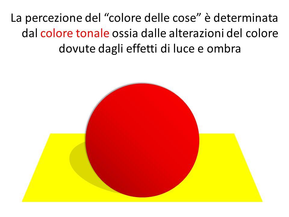 La percezione del colore delle cose è determinata dal colore tonale ossia dalle alterazioni del colore dovute dagli effetti di luce e ombra