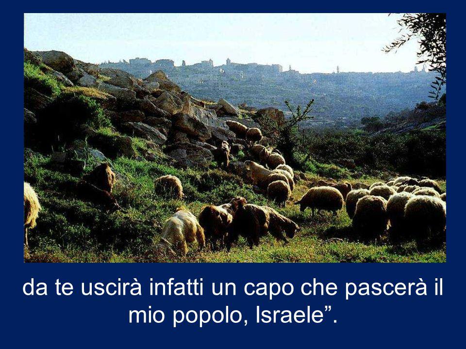 da te uscirà infatti un capo che pascerà il mio popolo, Israele .