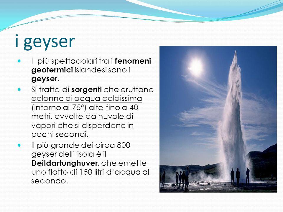 i geyser I più spettacolari tra i fenomeni geotermici islandesi sono i geyser.