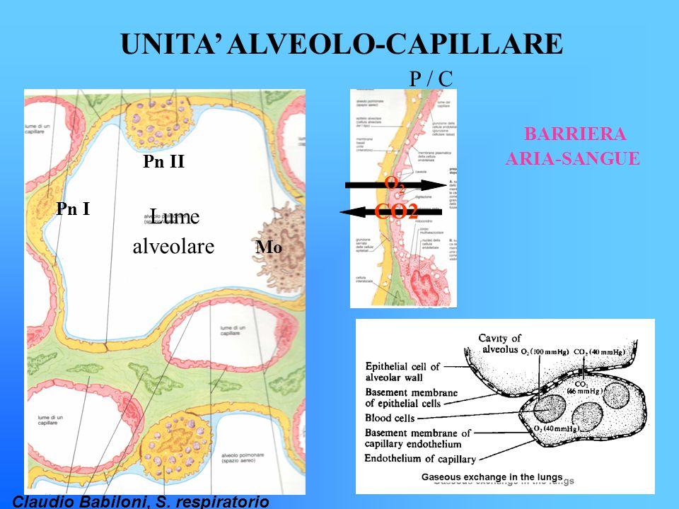 UNITA' ALVEOLO-CAPILLARE