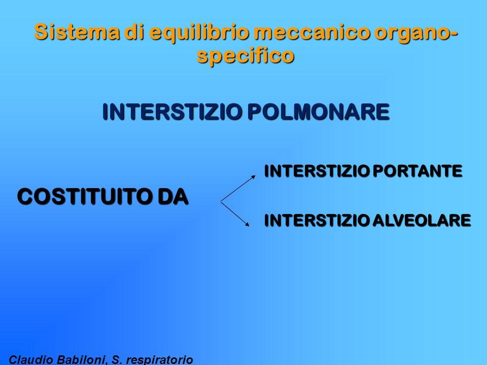 Sistema di equilibrio meccanico organo-specifico INTERSTIZIO POLMONARE
