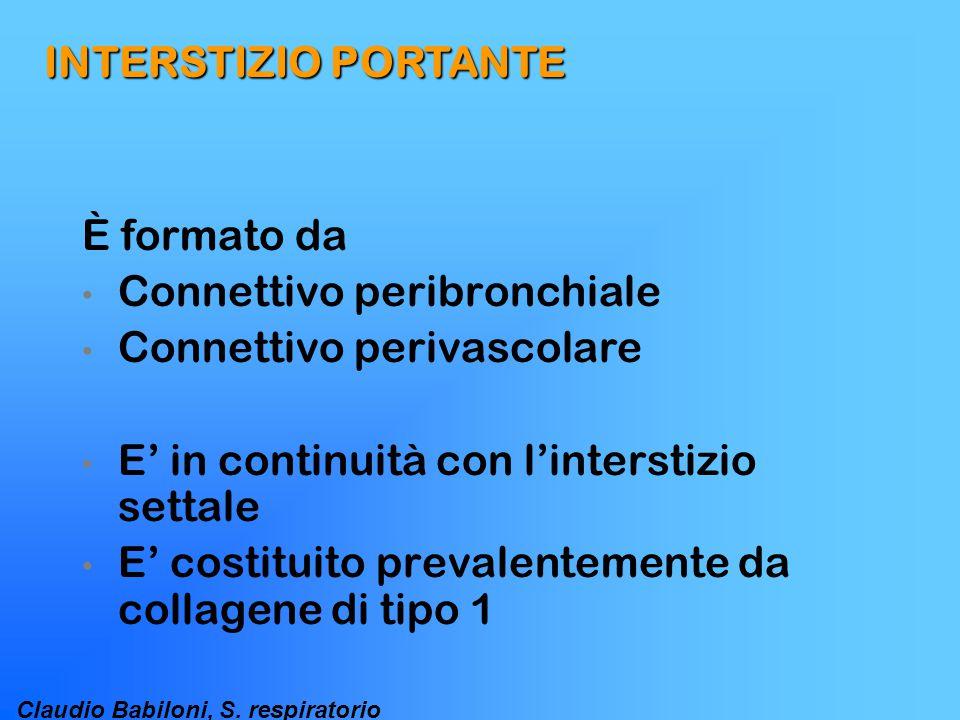 INTERSTIZIO PORTANTE È formato da. Connettivo peribronchiale. Connettivo perivascolare. E' in continuità con l'interstizio settale.