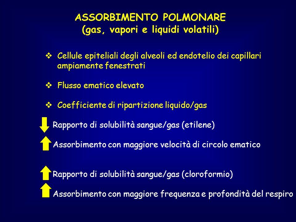 ASSORBIMENTO POLMONARE (gas, vapori e liquidi volatili)