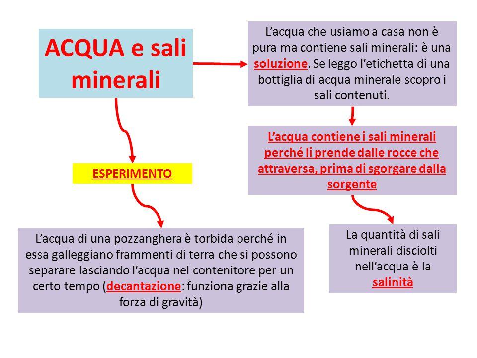 La quantità di sali minerali disciolti nell'acqua è la salinità