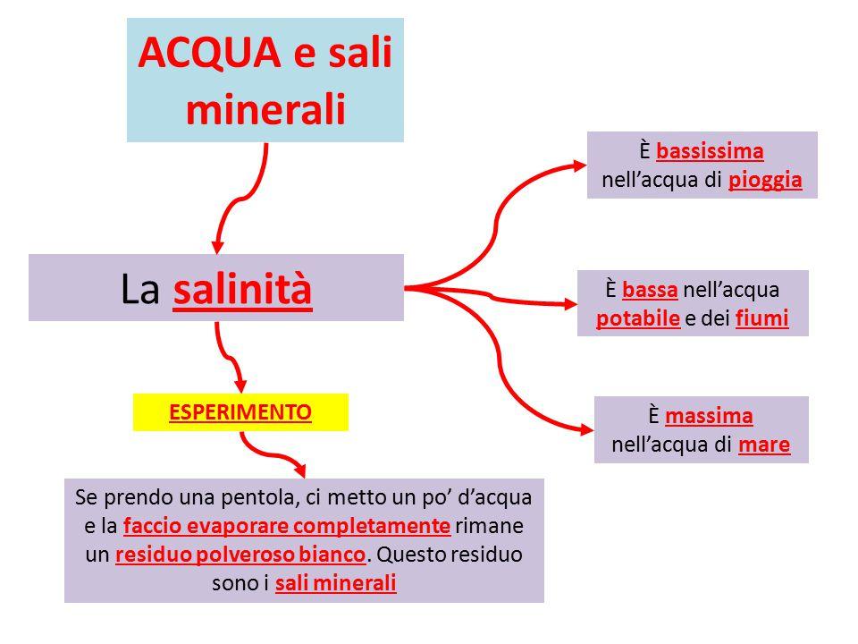 ACQUA e sali minerali La salinità È bassissima nell'acqua di pioggia