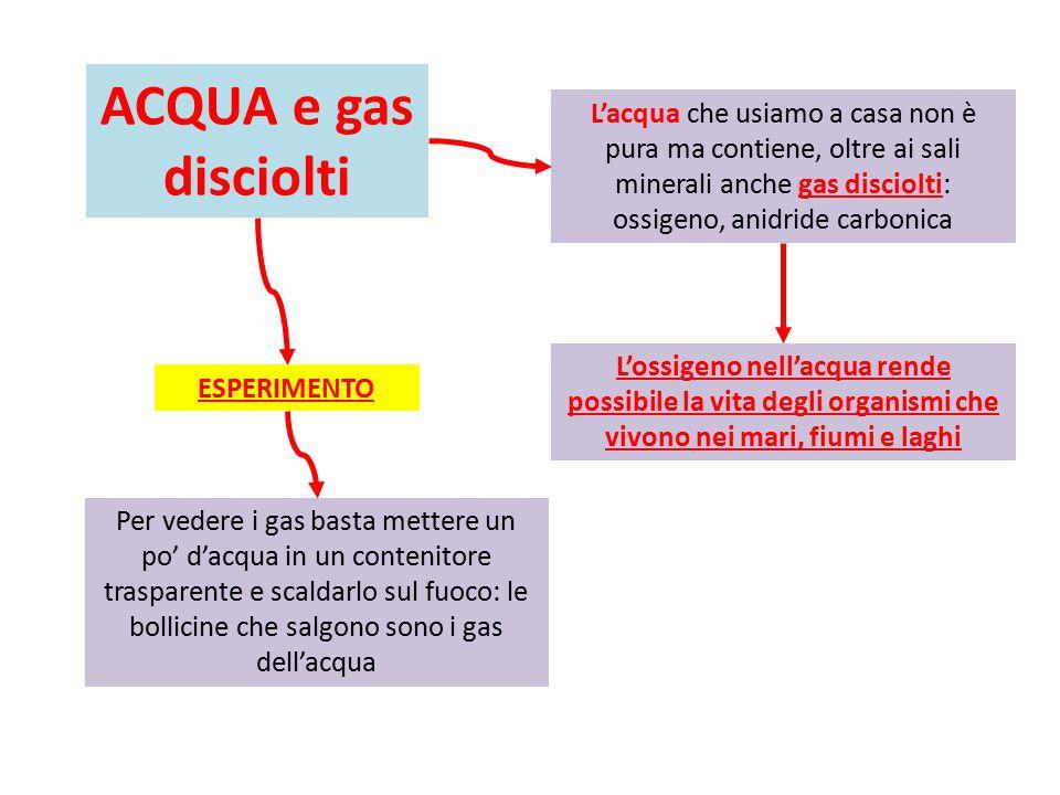 ACQUA e gas disciolti L'acqua che usiamo a casa non è pura ma contiene, oltre ai sali minerali anche gas disciolti: ossigeno, anidride carbonica.