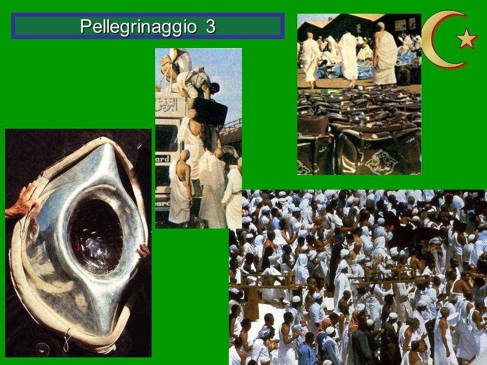 Z Pellegrinaggio 3