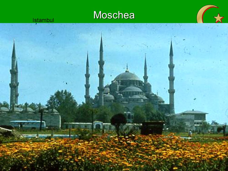 Z Moschea Istambul Il Cairo