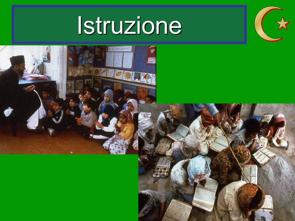 Istruzione Z