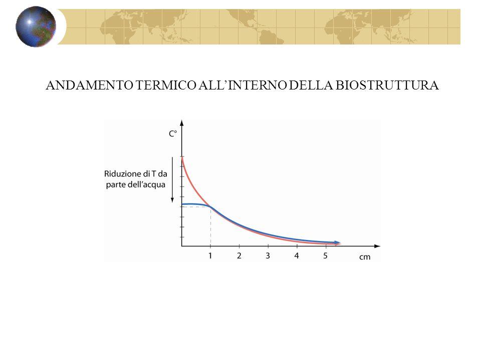ANDAMENTO TERMICO ALL'INTERNO DELLA BIOSTRUTTURA