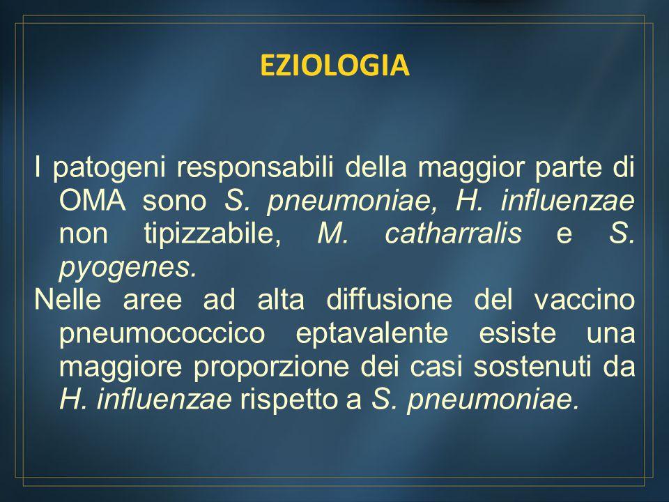 EZIOLOGIA I patogeni responsabili della maggior parte di OMA sono S. pneumoniae, H. influenzae non tipizzabile, M. catharralis e S. pyogenes.