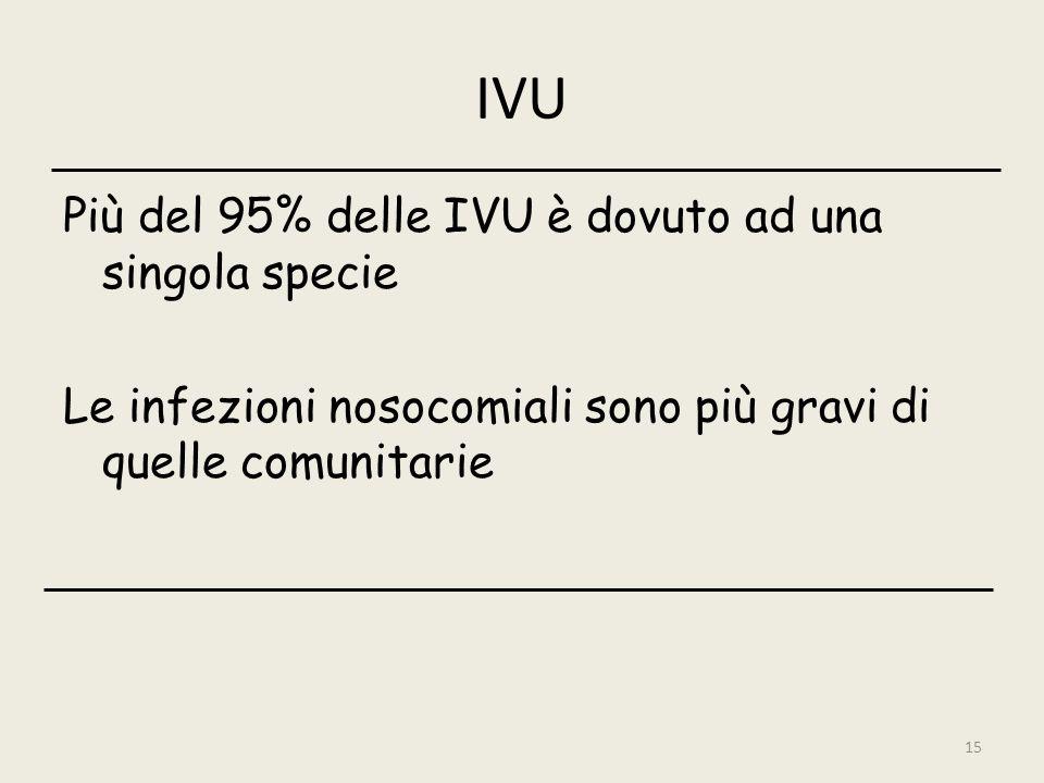 IVU Più del 95% delle IVU è dovuto ad una singola specie Le infezioni nosocomiali sono più gravi di quelle comunitarie