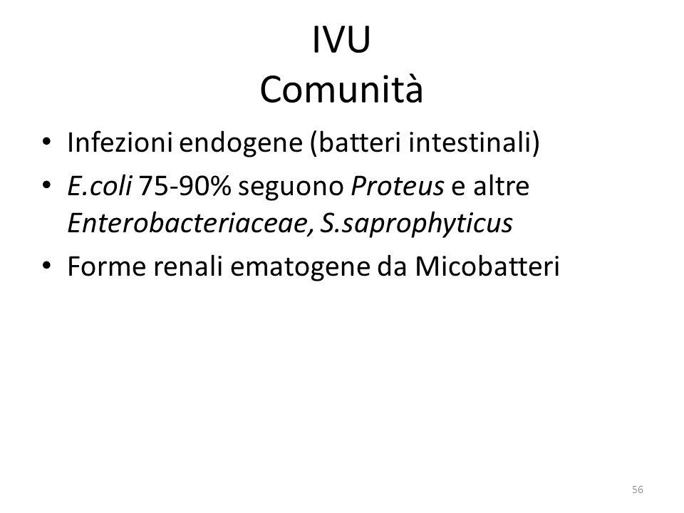 IVU Comunità Infezioni endogene (batteri intestinali)