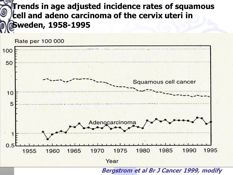 Trends in age adjusted incidence rates of squamous cell and adeno carcinoma of the cervix uteri in Sweden, 1958-1995