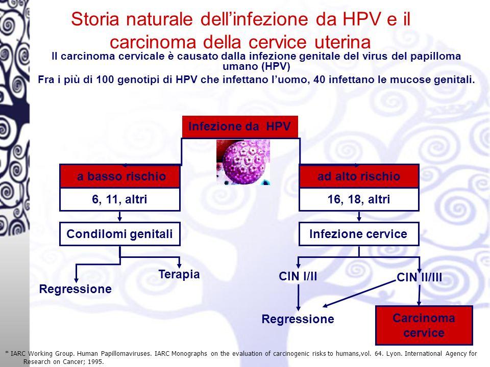 Storia naturale dell'infezione da HPV e il carcinoma della cervice uterina