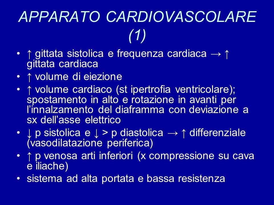 APPARATO CARDIOVASCOLARE (1)