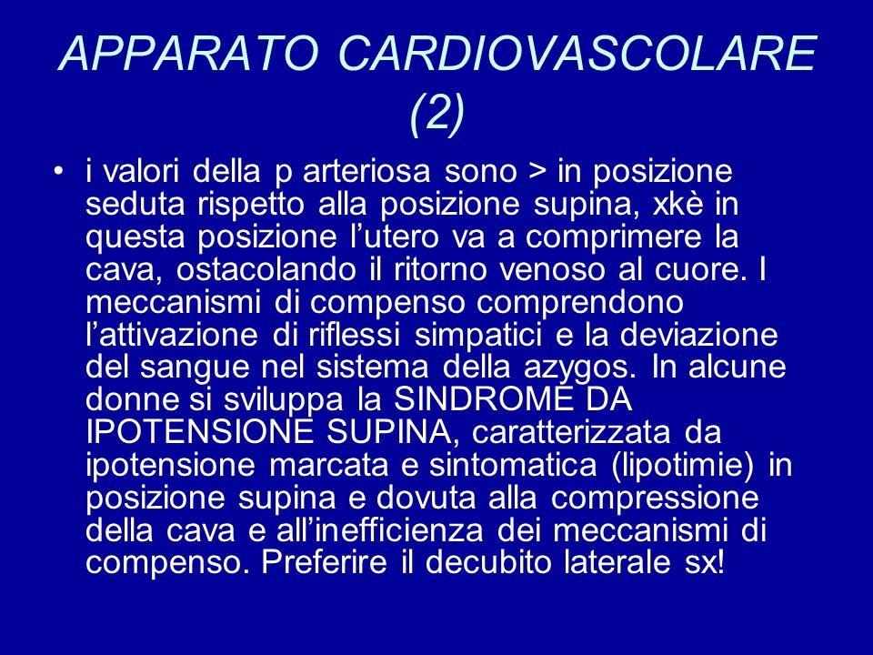 APPARATO CARDIOVASCOLARE (2)