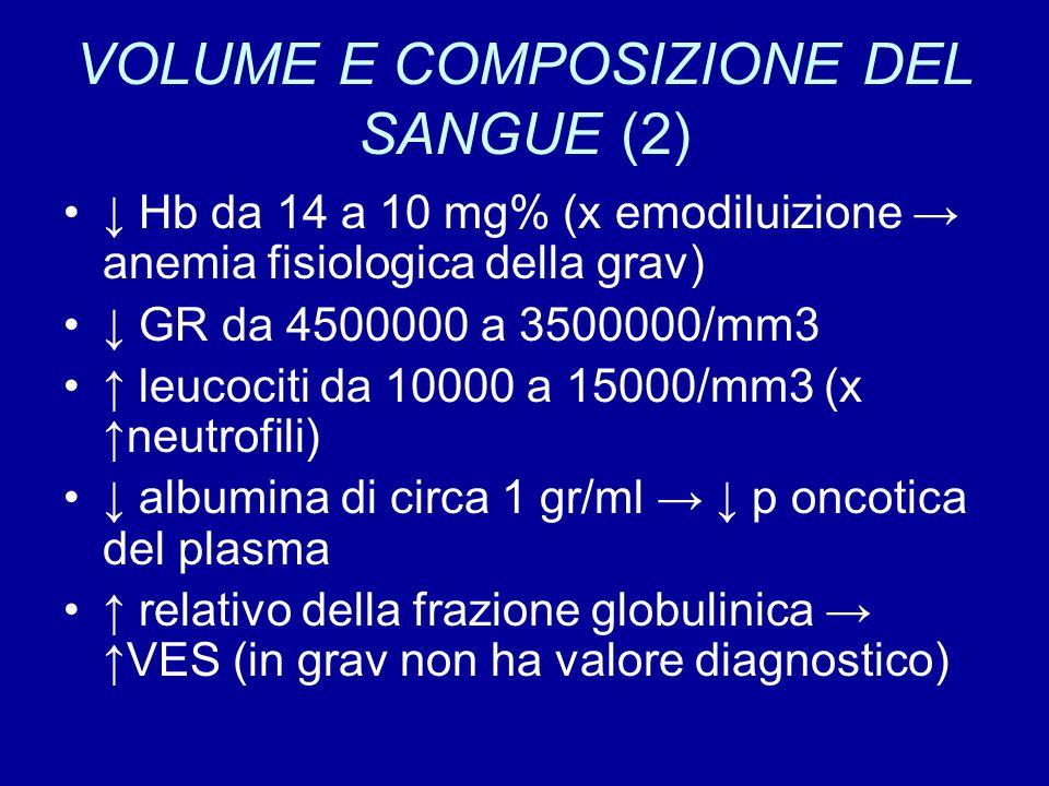 VOLUME E COMPOSIZIONE DEL SANGUE (2)