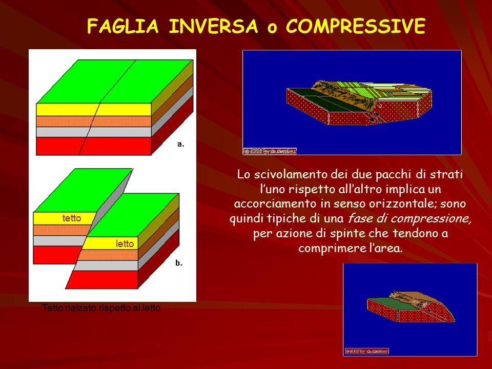 FAGLIA INVERSA o COMPRESSIVE