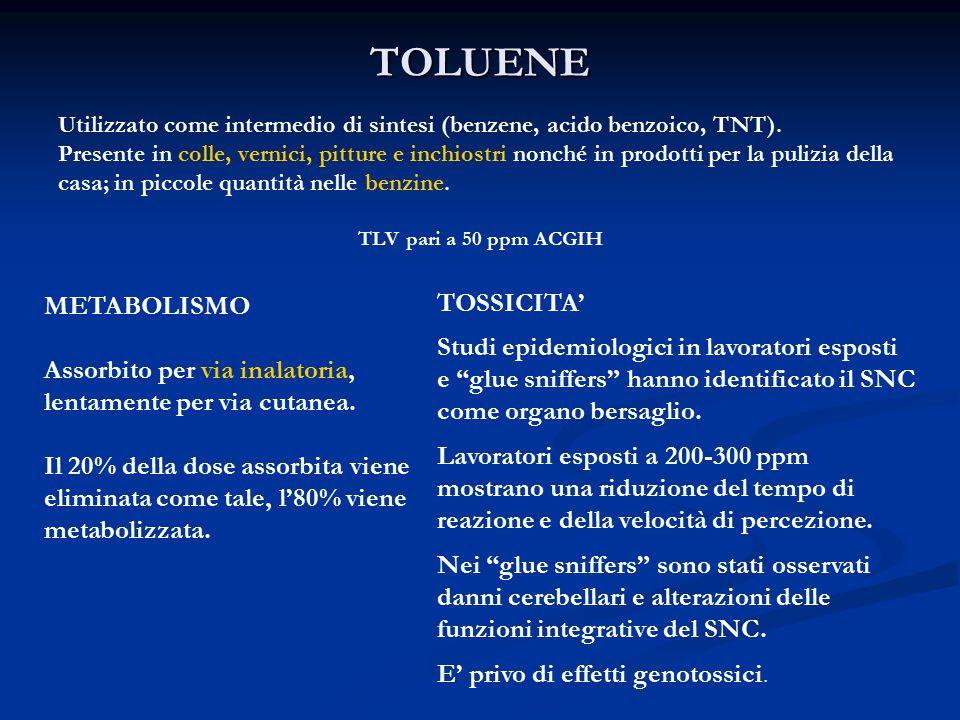 TOLUENE METABOLISMO TOSSICITA'