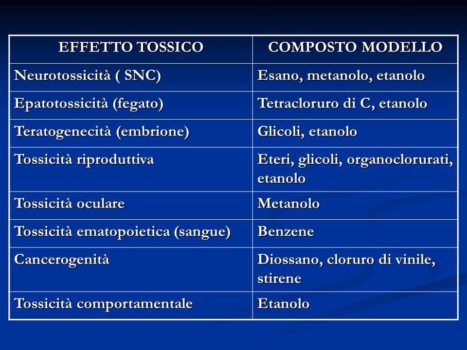 EFFETTO TOSSICO COMPOSTO MODELLO. Neurotossicità ( SNC) Esano, metanolo, etanolo. Epatotossicità (fegato)