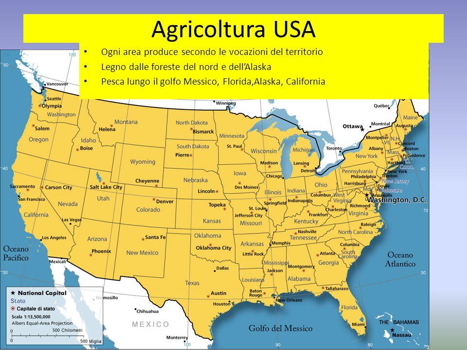 Agricoltura USA Ogni area produce secondo le vocazioni del territorio