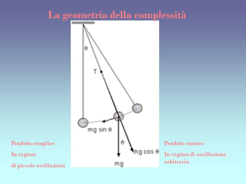 La geometria della complessità
