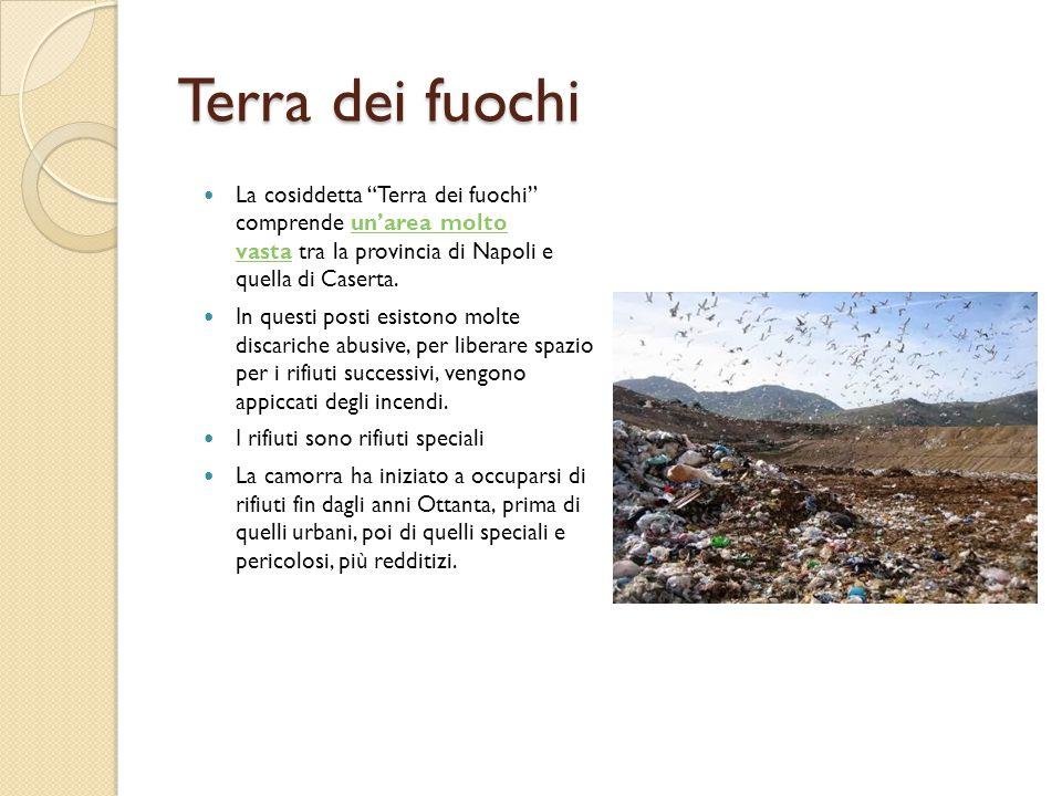Terra dei fuochi La cosiddetta Terra dei fuochi comprende un'area molto vasta tra la provincia di Napoli e quella di Caserta.