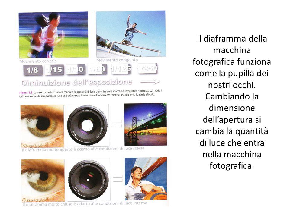Il diaframma della macchina fotografica funziona come la pupilla dei nostri occhi.
