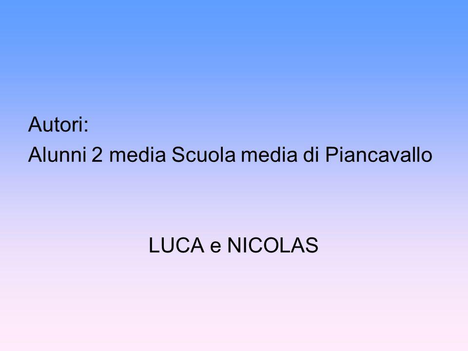 Autori: Alunni 2 media Scuola media di Piancavallo LUCA e NICOLAS