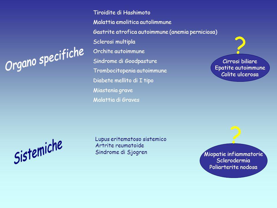Miopatie infiammatorie