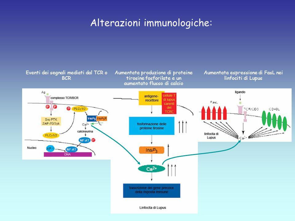 Alterazioni immunologiche: