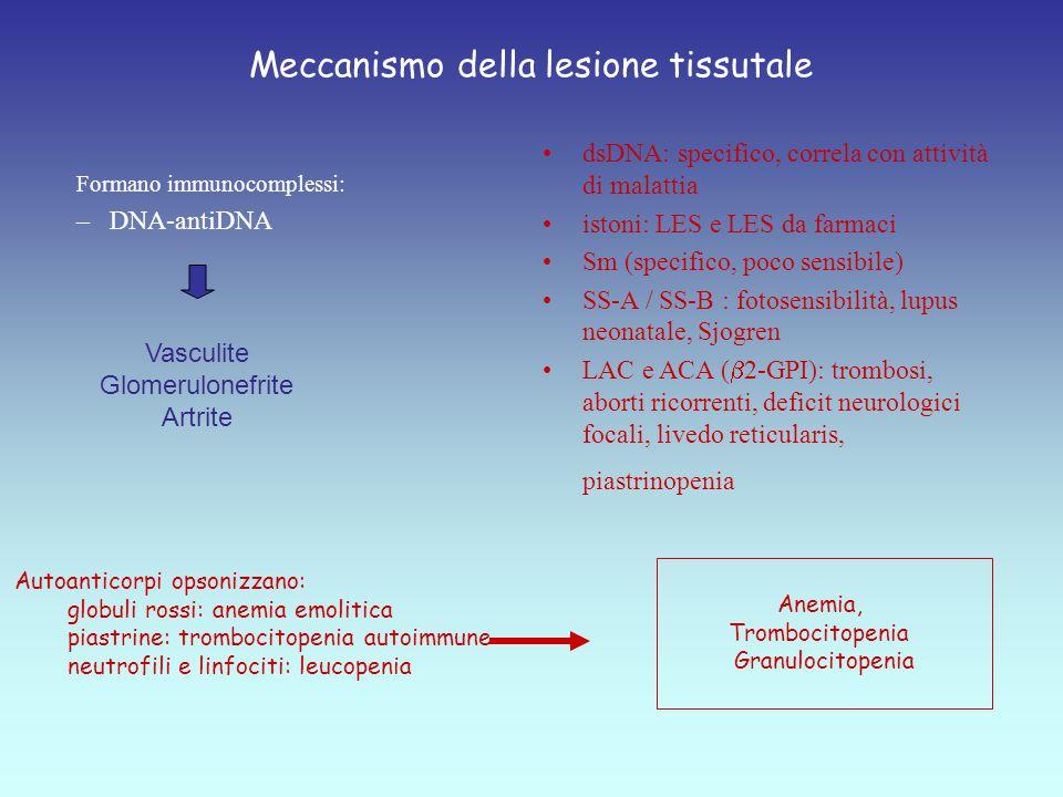 Meccanismo della lesione tissutale