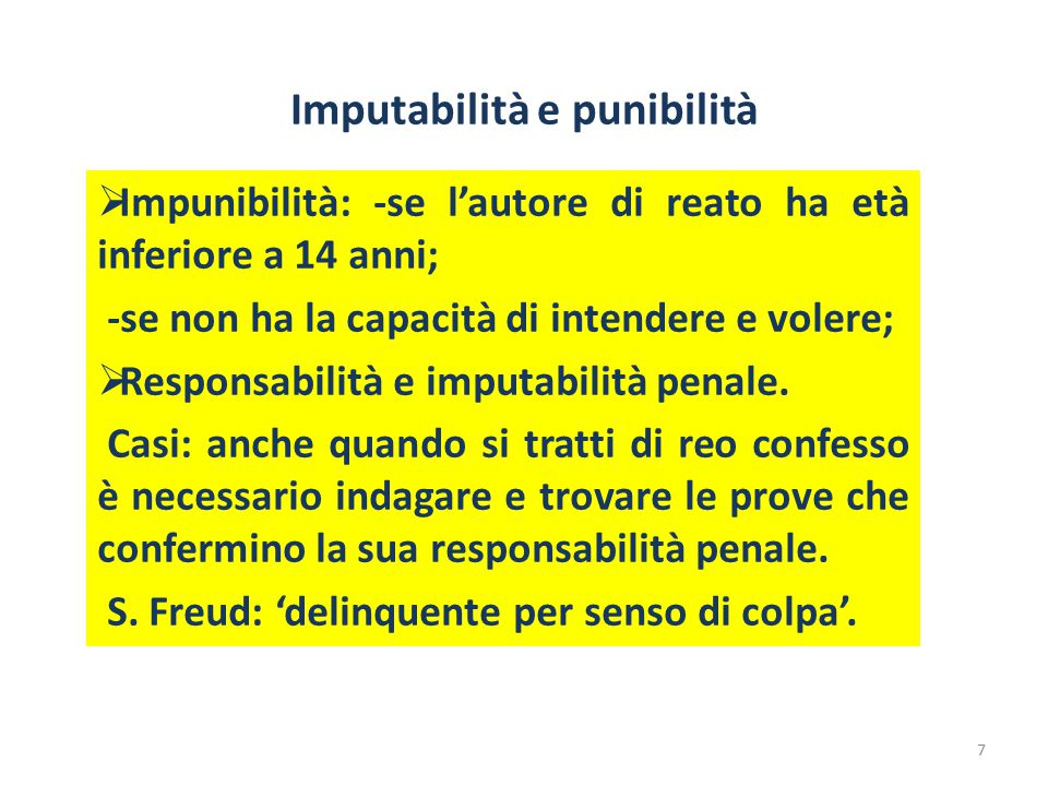 Imputabilità e punibilità
