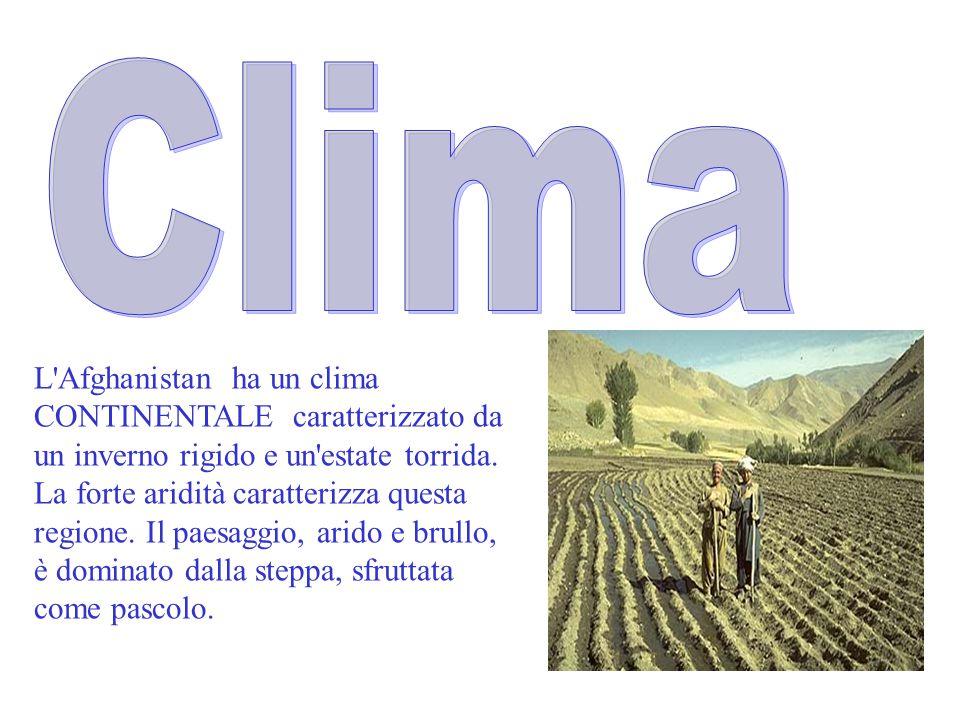 Clima L Afghanistan ha un clima CONTINENTALE caratterizzato da un inverno rigido e un estate torrida.