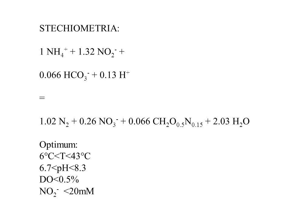 STECHIOMETRIA: 1 NH4+ + 1.32 NO2- + 0.066 HCO3- + 0.13 H+ = 1.02 N2 + 0.26 NO3- + 0.066 CH2O0.5N0.15 + 2.03 H2O.