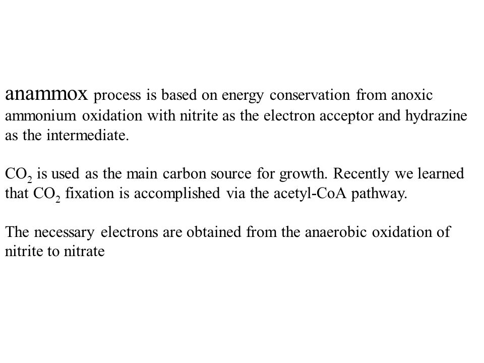 anammox process is based on energy conservation from anoxic ammonium oxidation with nitrite as the electron acceptor and hydrazine as the intermediate.