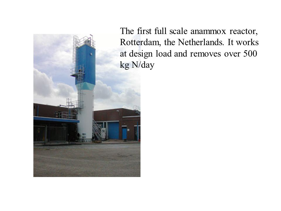 The first full scale anammox reactor, Rotterdam, the Netherlands