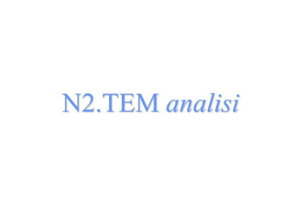 N2.TEM analisi