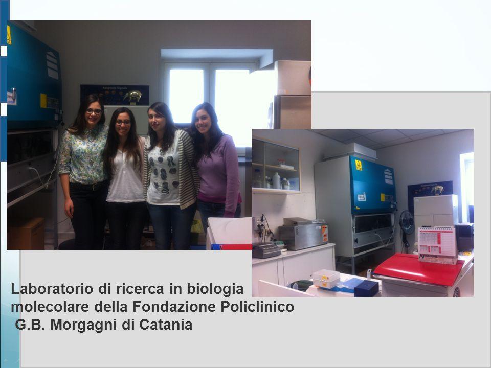 Laboratorio di ricerca in biologia molecolare della Fondazione Policlinico G.B. Morgagni di Catania