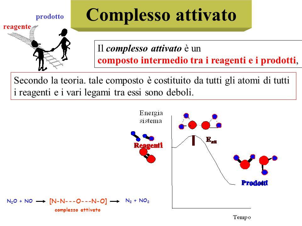 Complesso attivato Il complesso attivato è un