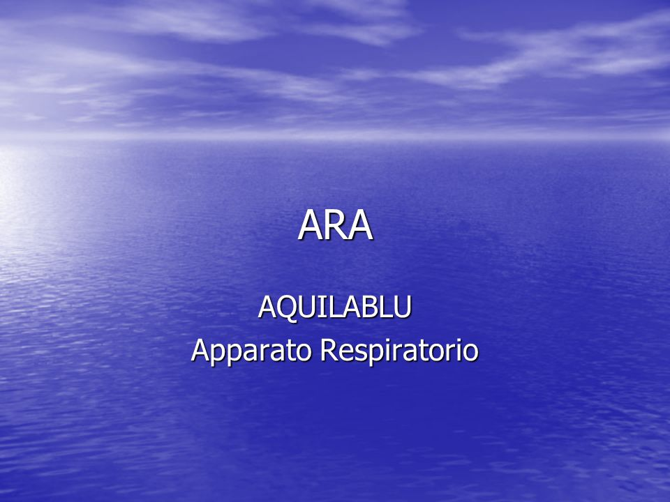 AQUILABLU Apparato Respiratorio